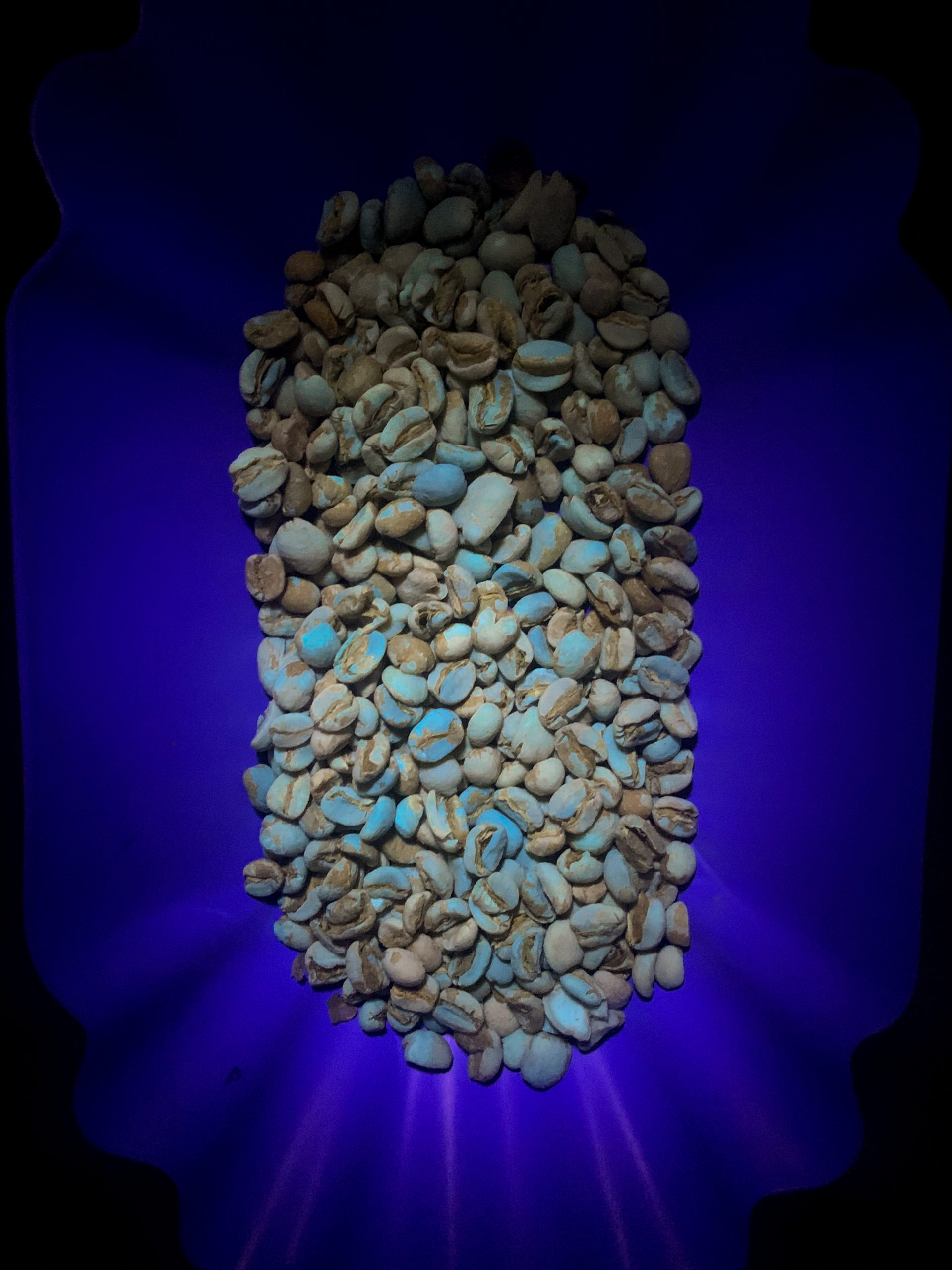 Coffee under ultraviolet light